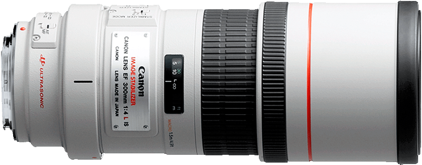 A fixed telephoto, the 300mm f/4L offers prime lens sharpness not found in telephoto zooms.