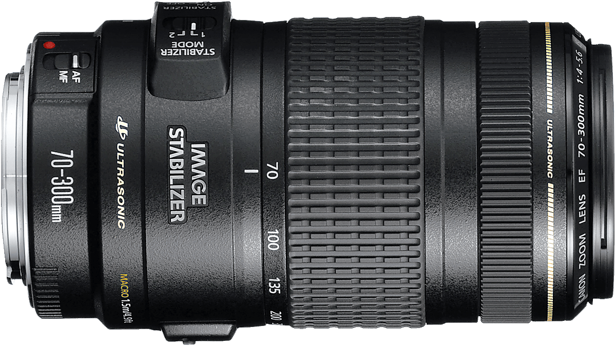 An affordable superzoom lens, works very well in good light.