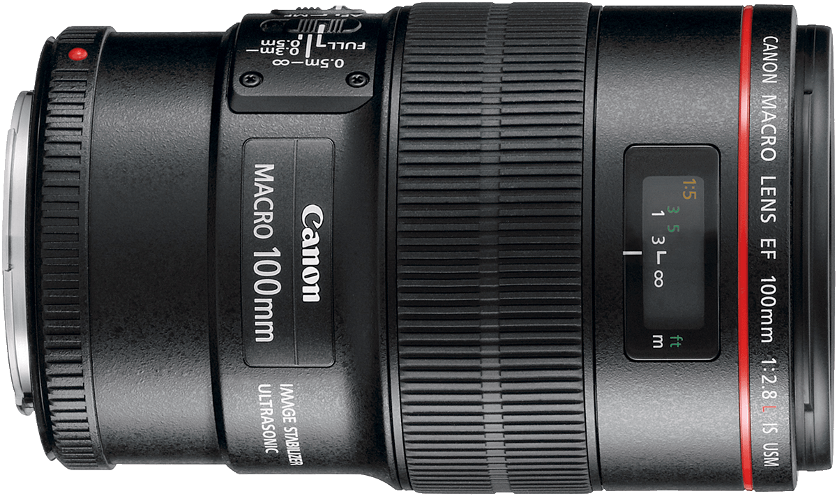 Canon's high end version of the 100mm f/2.8, adding a latest generation image stabilizer to an already impressive lens.