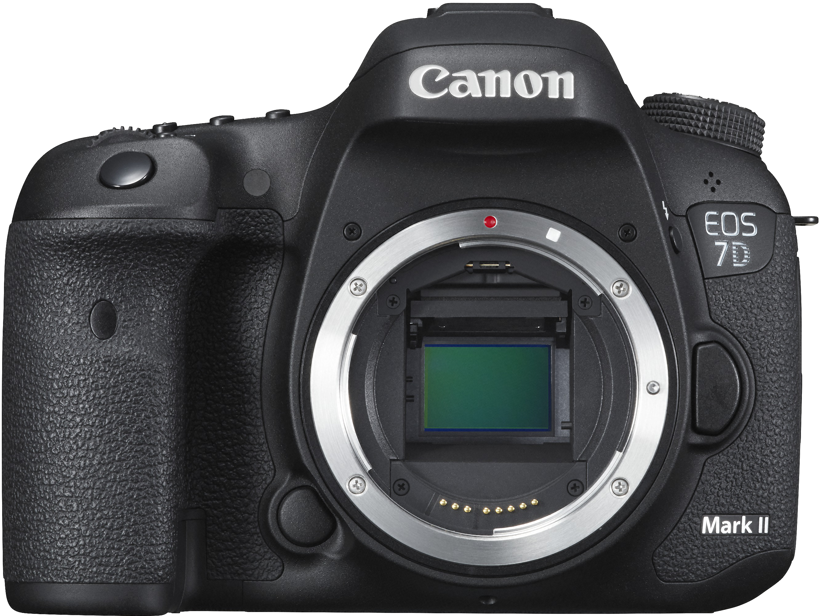 Canon's flagship crop sensor camera with high end autofocus and 10fps shooting. Great for sports or action.