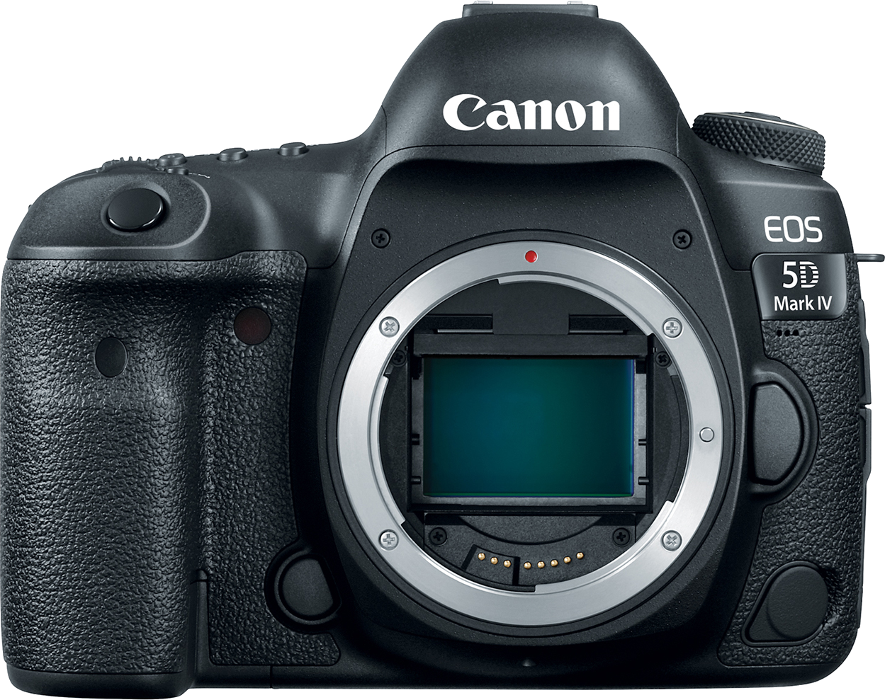 30.4 megapixel DSLR with 7fps, built-in wifi and touch screen